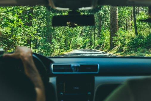 курсове за шофьори